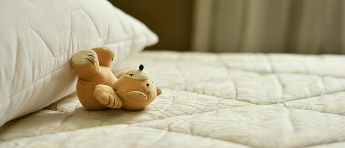 Ein Heim für Tiere? Aber doch nicht für Schädlinge auf Ihrer Matratze!